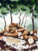 Wood stock by asbiswas