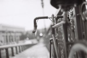Fixie in bw2 by Crypt012