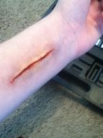 FX Make Up Slit Wrist by XxRoseAlchemistxX