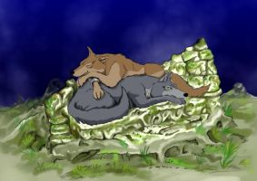 Wolf's Rain: Toboe and Tsume by Miki-