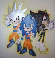Sonic and Dragon Ball Z by Nadz007