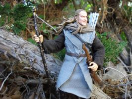 Haldir of Lorien by Cin320