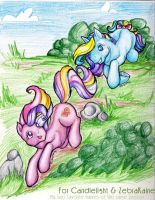 Seaspray and Fluttershy... by colormist