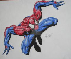 The Amazing SPider-Man by achillesbeast