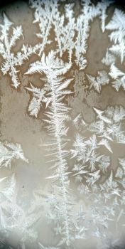 Ice crystals 3 by CORinAZONe