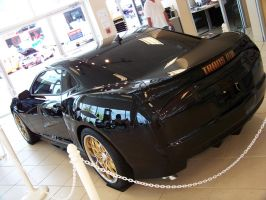 2010 Trans Am_III by DetroitDemigod