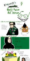 Harry Potter Meme by Kriegswaffle