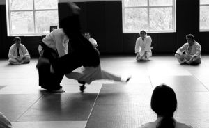 Aikido Seminar February 2014, 4 by bebelee