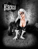 Blackcat by amadis33