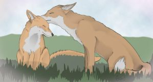 Fox Love by Tebyx