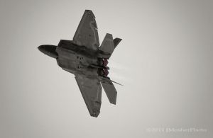 F22 Belly Black and white by jdmimages