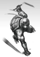 TMNT: Mike by bumhand