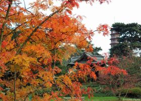 Winter is Coming // Kew Pagoda by greenjinjo