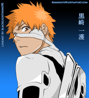 Bleach - Complete Fullbring by Remmirath90