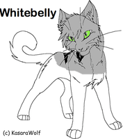 Whitebelly Cat Breedable by WarriorCatLuver123