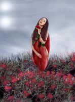 Florale by Flore-stock