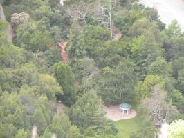 Top View of Alum Rock Park by katgirl28