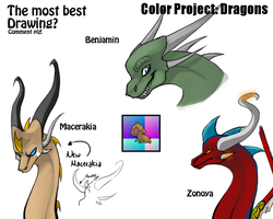 COLOR PROJECT - Dragons by schl4fmuetze
