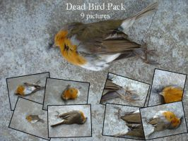 Dead bird pack 1 by IcyStock