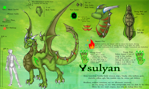 Ysulyan's 2011 Reference Sheet by Ysulyan