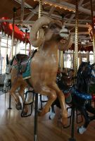 Great Plains Carousel 38 by Falln-Stock
