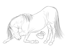 Horse bow lineart by Sassparylla