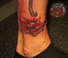 Lotus Flower Colour Tattoo by DirkDriekusBullseye