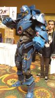 Taiyou Con 2014- Gipsy Danger by DTKid