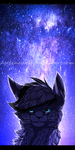 .: Starry Night :. by Agelenawolf