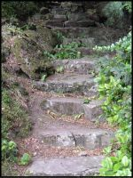 Stone Steps2 by habren