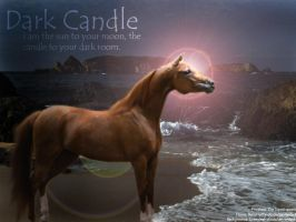Dark Candle by Theliquidspoon