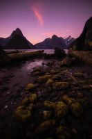 Milford Sound by stinebamse