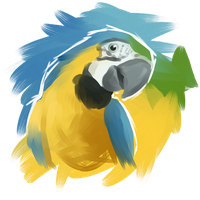 Blue and Gold Macaw by pseudoMim