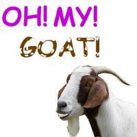 Oh my goat by CoolestNinja1242
