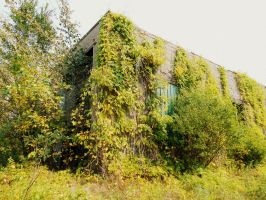Nature Taking Over by Ayula