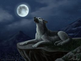 Abrek: night howl by Azany