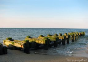 Jetty by Cinnamoncandy