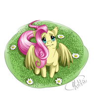 Fluttershy by snickerdoots