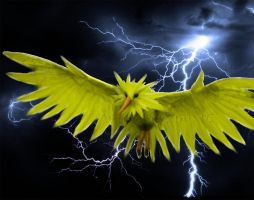 Photomanipulation: Zapdos by WindieDragon