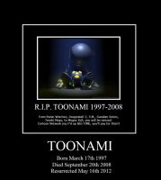 Toonami Demotivational Poster by thesalsaman
