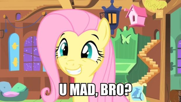 U MAD BRO? by shado013