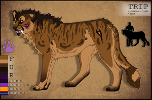 Reference Sheet: T R I P -current- by xPatronus