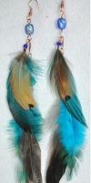 brown and blue feathers 2 by JozzyKane