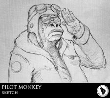 Pilot monkey by Bourrouet