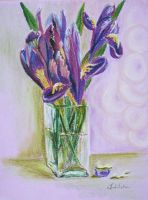 Irisies2 by danuta50