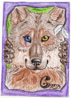 ACEO with Gara by Cally-Dream