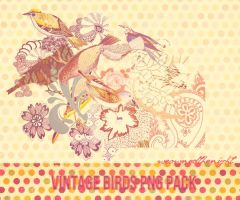 Vintage Birds Png Pack -#1 by weownedthenight