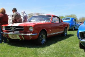 1965 Mustang Fastback 2+2 by Cherry-Man