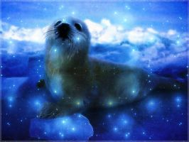 Seal wallpaper by PimArt