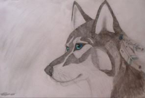 Huskey by Katheriine